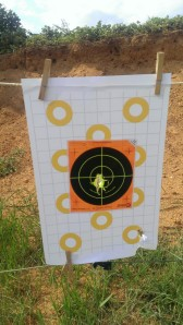 50 Yards. 2 shots dead center, one bottom right.